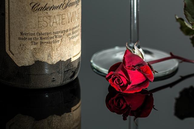 rose-1024710_640